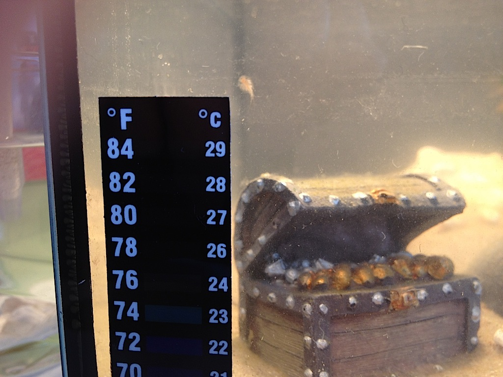Triops thermometer